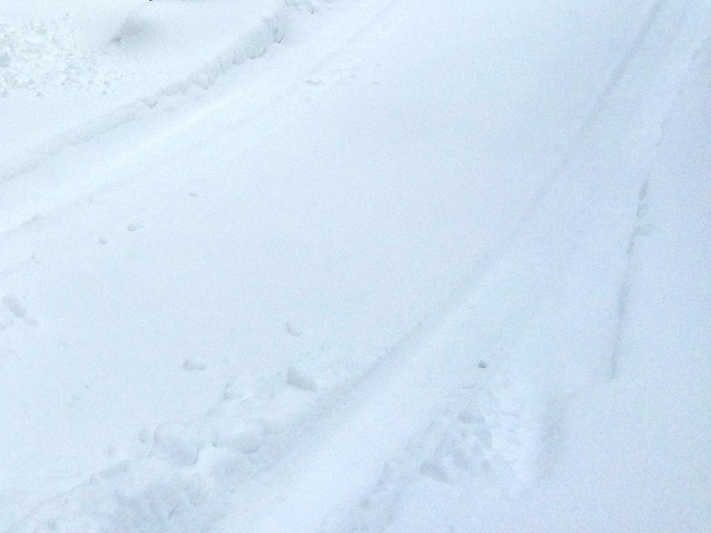Slik får du løs bilen fra snøen